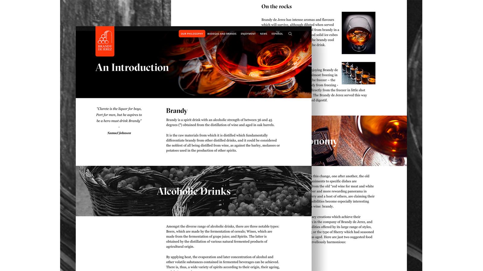 Brandy Case Study 1600x900